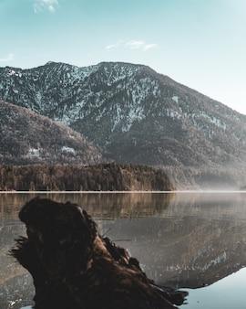 Vista verticale di un lago e di una montagna ricoperta di alberi e neve