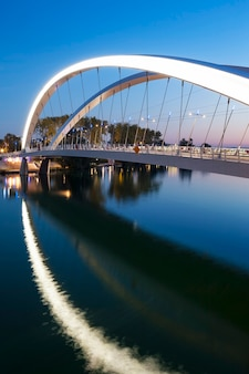 フランス、ローヌ川の合流地区近くのリヨン市の垂直方向のビュー Premium写真