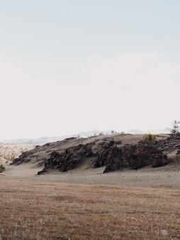 Вертикальный вид на скалы с небольшой растительностью на рассвете