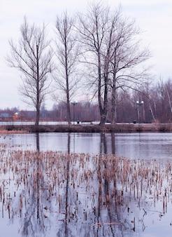 Вертикальный ручей на весеннем парке пейзажный фон