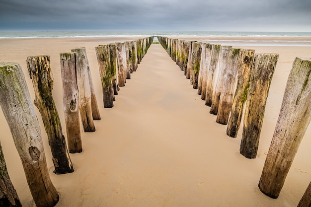 Vertical wooden planks in the sand of an unfinished wooden dock at the beach under a cloudy sky