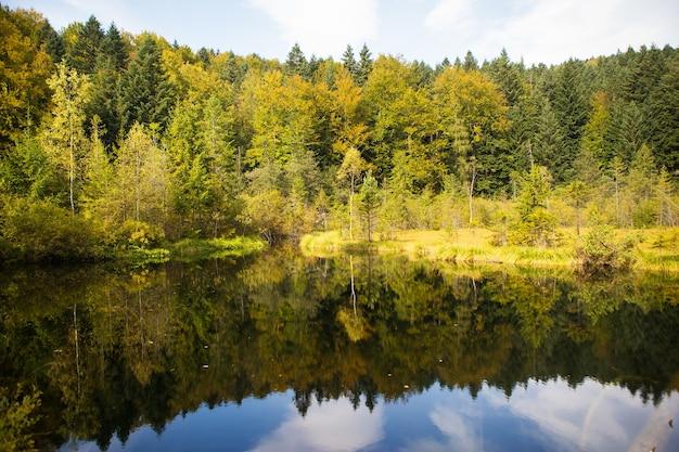 カルパティア山脈ウクライナの非常に美しい秋のパノラマ-湖、森。