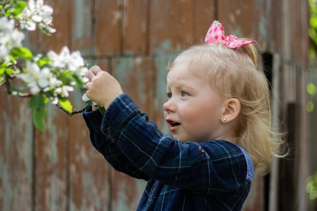 Very beautiful girl with blond hair looks at a branch of blooming cherry and touches the flowers with her finger