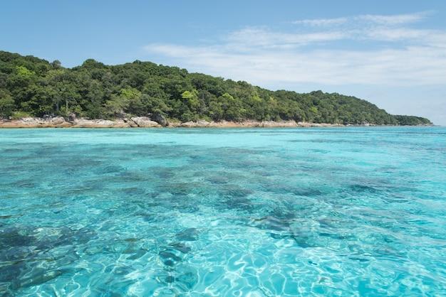 Очень прозрачная прозрачная голубая морская бирюза и изумрудный цвет может видеть много рифов под водой