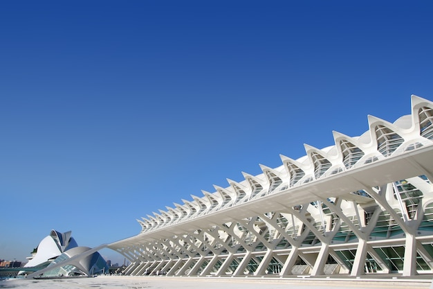 스페인 발렌시아의 아주 멋진 현대식 건물