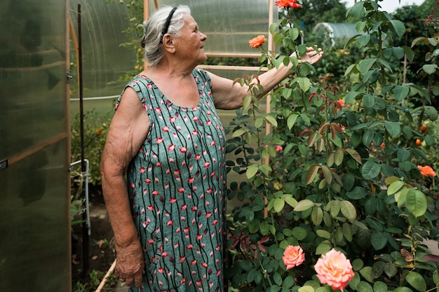 Very old senior woman working in her garden in summer. grandmother stays near the greenhouse and grows roses. hobbies for the elderly concept. grandparents day.