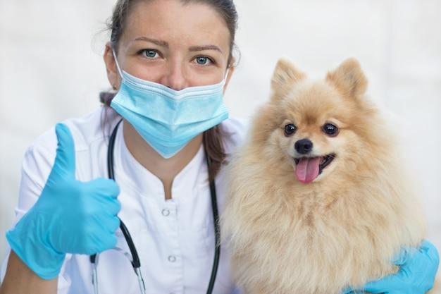 Ветеринар и собака в клинике.