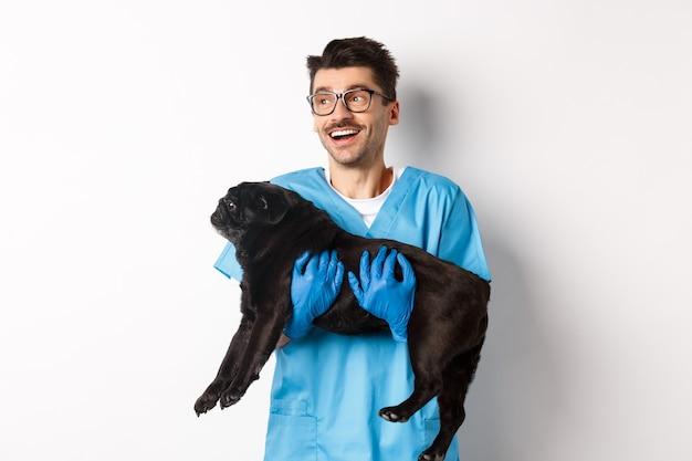獣医クリニックのコンセプト。かわいい黒のパグ犬を保持し、笑顔で左を見て、白い背景の上に立っている幸せな男性医師の獣医。