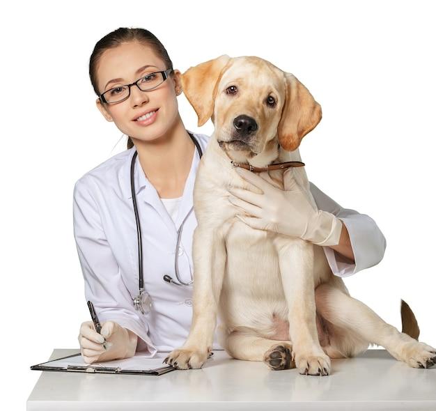 작은 강아지와 함께 기술을 사용하는 수의사 - 흰색 배경 위에 격리