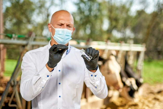 乳牛のいる農場で牛を飼っている獣医。