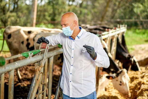 農場の牛の獣医が分析を行います。
