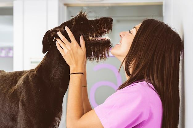美しい犬を抱き締める獣医。獣医の概念。
