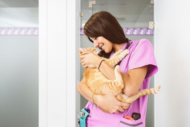 小さな猫を抱き締める獣医。獣医の概念。