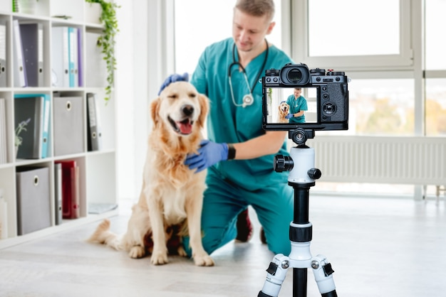クリニックでの予約後、獣医がゴールデンレトリバーの犬をなでる