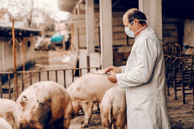 Veterinarian in white coat and with protective mask on face writing in clipboard results of pigs examination while standing in cote.