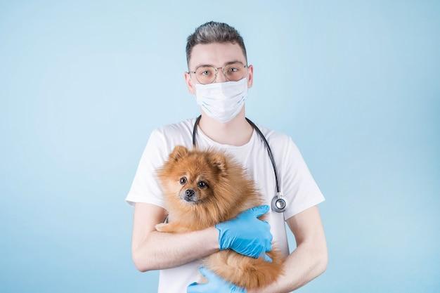 かわいい小さなスピッツ犬と一緒にクリニックで働く獣医