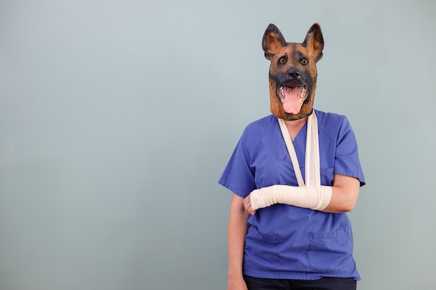 Veterinary dog with a broken arm and copy space