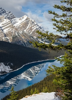 Vibrant blue peyto lake with reflection of canadian rocky mountain in alberta, canada.
