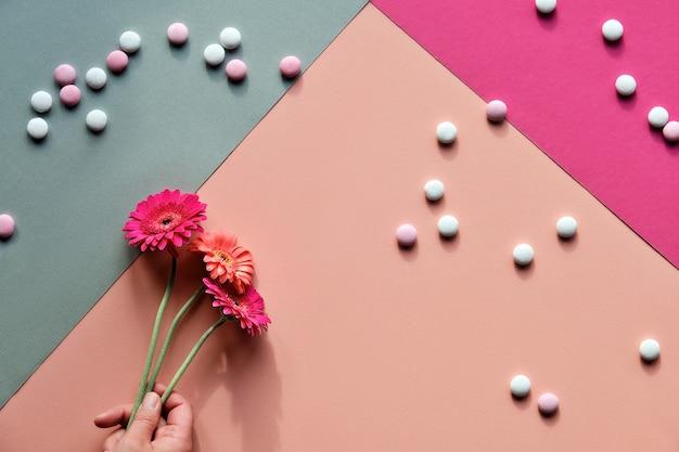 2つのトーンの幾何学的な紙に3つのガーベラの花を持っている手で活気に満ちたフラットレイ