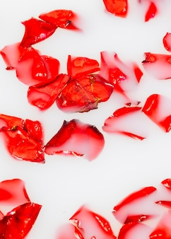 Vibrant red flower petals floating on clear white water