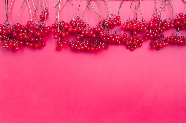 秋の組成。ピンクの背景に赤いviburnumの果実で作られたフレーム