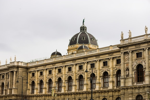 Венская академия художеств, здание позади в пасмурный день,
