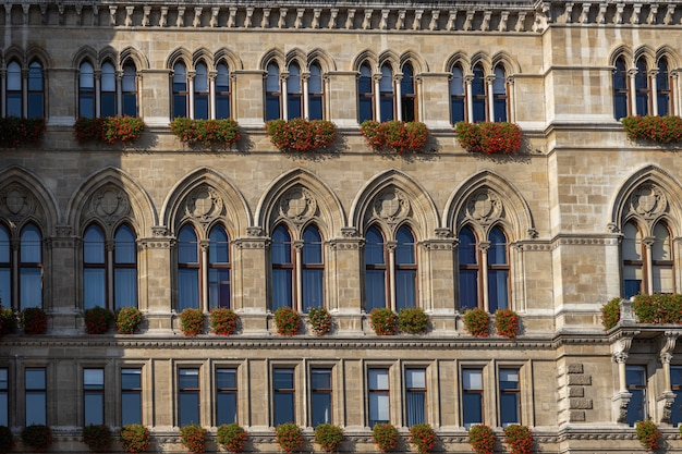 Vienna city hall facade view with beautiful windows and details