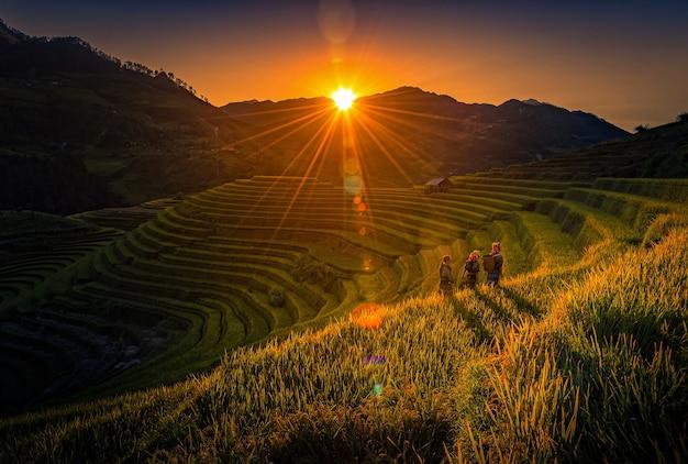 Vietnamese children walking home on harvest rice field at sunset in mu cang chai, yenbai,