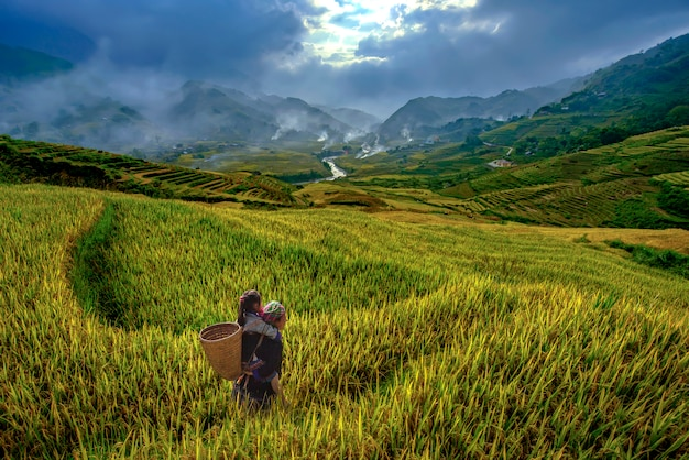 Vietnamese grandmother and young niece walking in the rice terraces to go to work in the morning of the harvest season in mu cang chai, yenbai, vietnam.