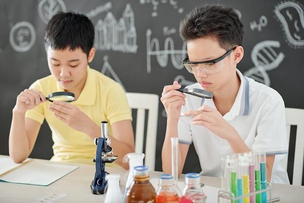 돋보기를 통해 퍼티 접시에 있는 물질을 보고 있는 베트남 학교 아이들