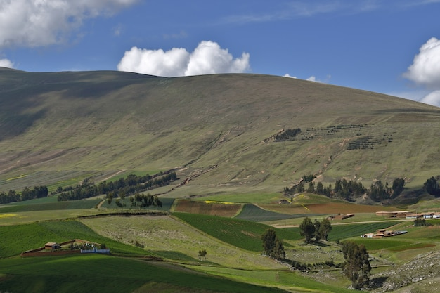 View of agricultural fields in the central andean