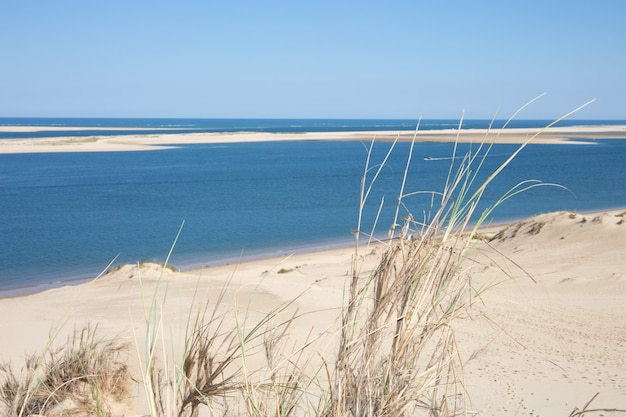 View of the arcachon bay and the duna of pyla, pilat aquitaine, france highest dune in europe