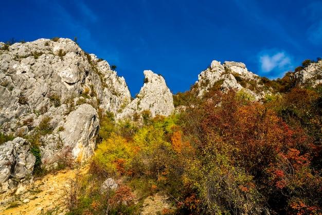 セルビアとルーマニアの国境にあるジェルダップのドナウ渓谷で見る