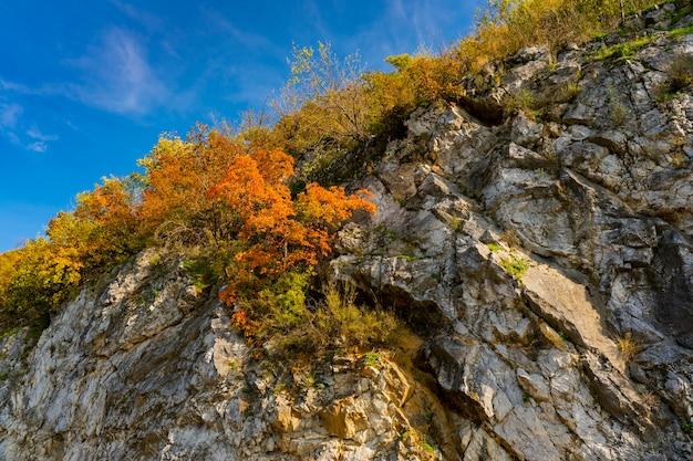 セルビアとルーマニアの国境にあるジェルダップのドナウ渓谷での眺め