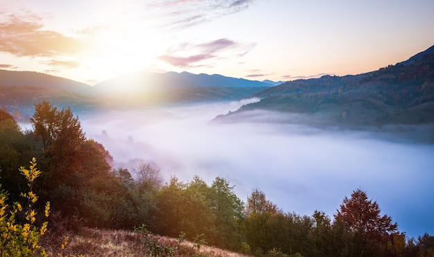 View of beautiful landscape in hillside meadow with bright rising sun