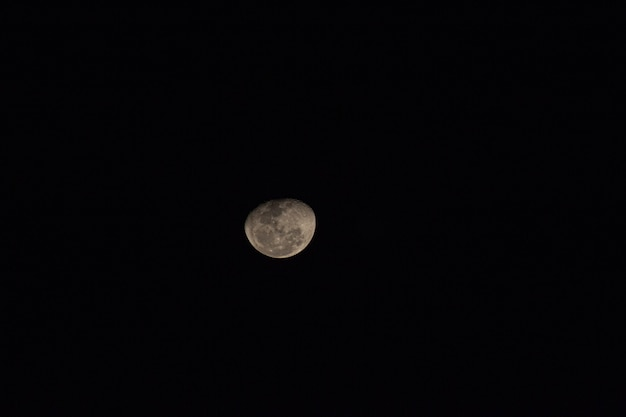 View of a beautiful shot of the moon.