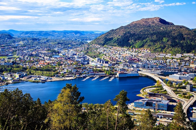 View on bergen and lake from the mountain top