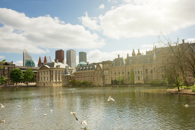 View of binnenhof (dutch parliament) at sunny day, the hague, netherlands
