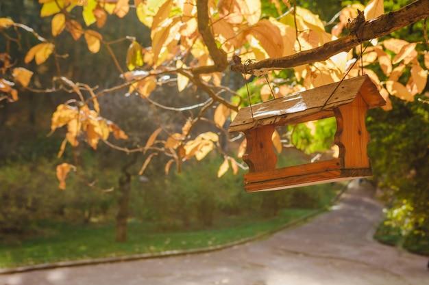 View of bird feeder at tree branch autumn season