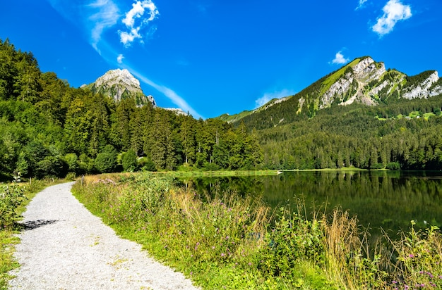 View of the brunnelistock mountain at obersee lake in the swiss alps