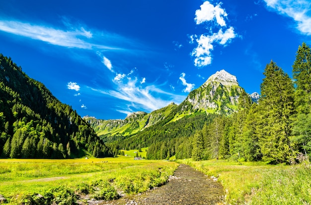 View of brunnelistock mountain and sulzback creek at obersee valley in the swiss alps