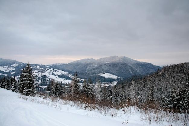カルパティア山脈を表示します。閉じる。冬の自然。大雪が降る。風景。パノラマ。
