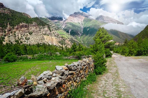 View on carpathian mountains