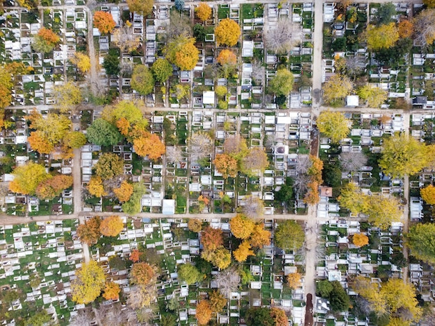 View of a cemetery with lots of graves and yellowed trees from the drone, top view, bucharest, romania