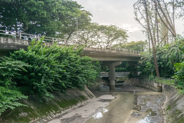 View of city bridge, water drainage and forest in singapore city