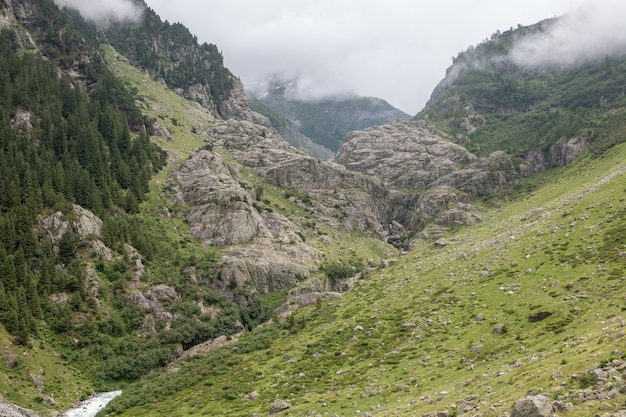 山、国立公園スイス、ヨーロッパのクローズアップ川のシーンを表示します。夏の風景、太陽の光の天気、劇的な青い空と晴れた日