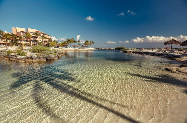 View of the crystal clear water of the caribbean sea in the middle of a natural pool in the mexican coast of puerto aventuras. in the water you can see the shadow of a palm tree.