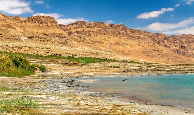 View of the dead sea coastline in israel