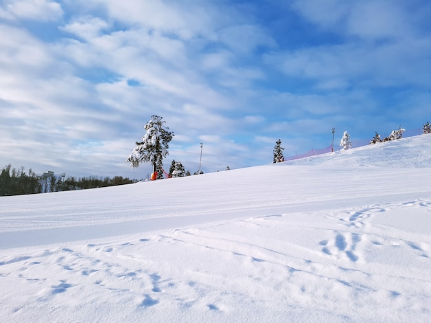 View of a deserted ski slope with a lonely tree against a sunny sky with clouds.