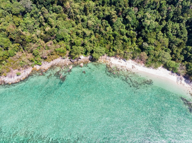 Above view of emerald tropical sea with coral reef and forest in island